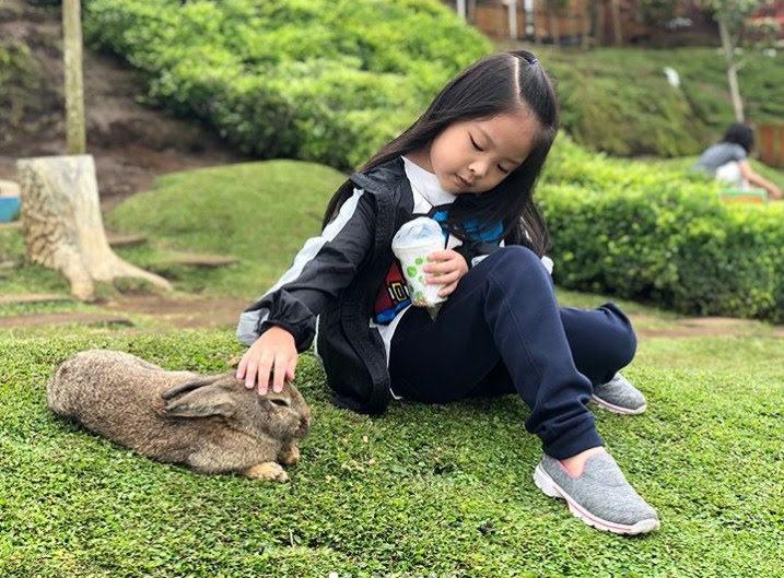 Wisata Taman kelinci pujon cocok untuk anak - anak