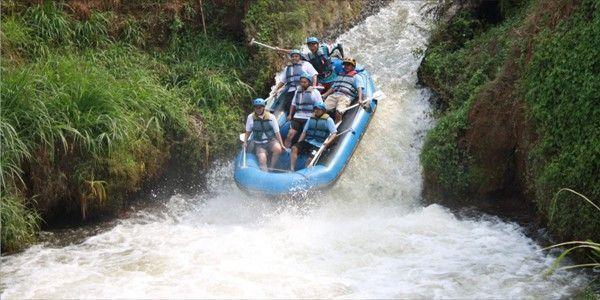 Sensasi Jeran Kasembon Rafting